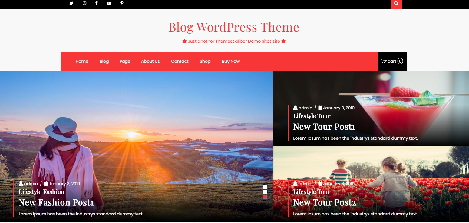 19 Best Free Wordpress Themes For Travel Affiliate Websites Tac Travel Affiliate Club
